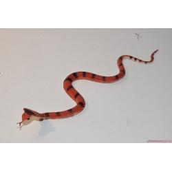 Csíkos kobra kígyó gumifigura
