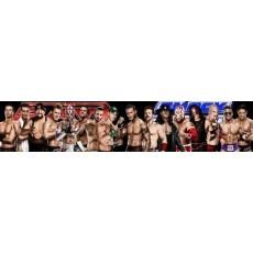 WWE JAKKS PACIFIC Pankrátorok