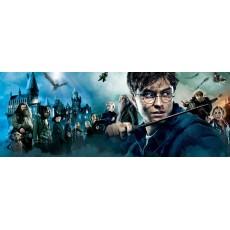 Harry Potter szereplők