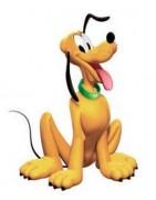 Pluto kutya