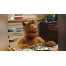 Alf űrlény