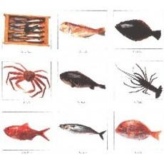 Hüllők,halak, rákok és tengeri herkentyűk